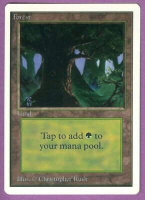 MtG Unlimited Edition Forest (C) - M/NM/SFY - Magic the Gathering - Basic Land