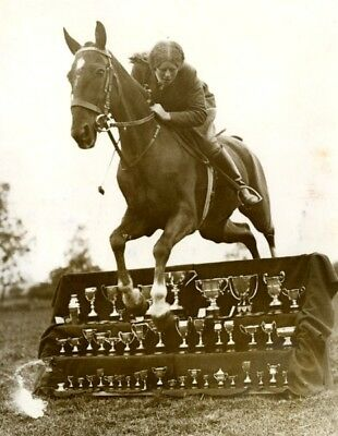 Horsewoman Machin Goodall Horse Jump over Trophy equitation cheval Photo 1934