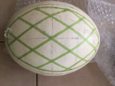 Ostrich Egg Marked For Decorating