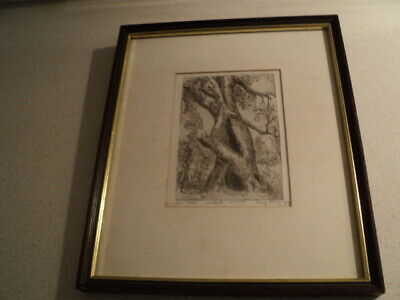 Old Tree Wilpena Pound original framed etching signed by artist George Edel 1979