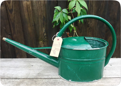 Galvanised Watering Can - Painted Vintage - Garden Planter Floral Allotment Prop