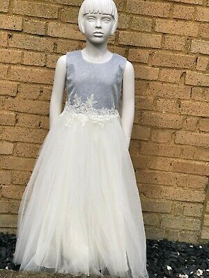 Beautiful Silver dress with full tulle