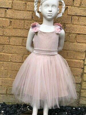 Girls Beautiful dress with flower and bow details