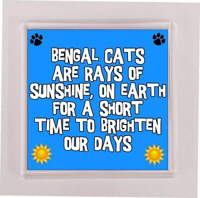 Novelty Gift Present RAYS OF SUNSHINE FOR A SHORT TIME Lurcher Coaster