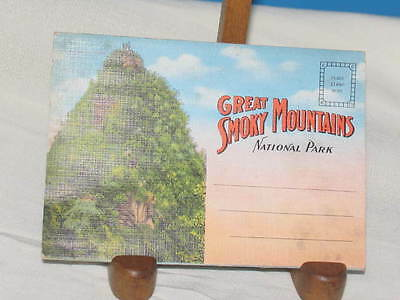 Great Smoky Mountains National Park Souvenir Folder Trout Fishing Chimney Tops