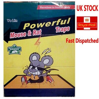 Super Mouse Trap,  1 pack for 3 Boards,  Buy 2  packs for 8 Boards
