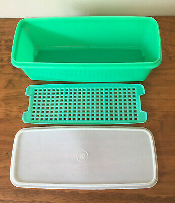Tupperware Celery Keeper Vegetable Container With Insert & Lid