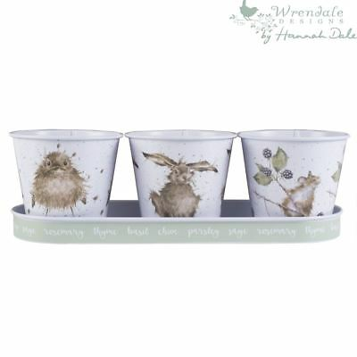 Wrendale Set Of 3 Large Galvanised Steel Multi Colour Herb Pots & Tray