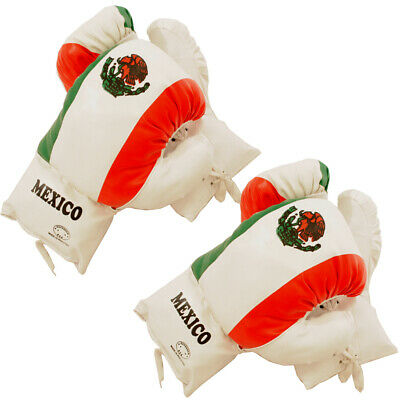 Mexico Flag 16 Oz Boxing Gloves 2 Pairs Vinyl Leather Gloves Practice Training