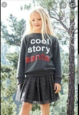 Girls Party  Xmas Outfit grey /silver Skirt  sweatshirt 10 Yrs Next worn once