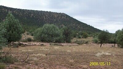 40 acre ranch land, mtn, recreational/ bid for downpayment/ read total ad