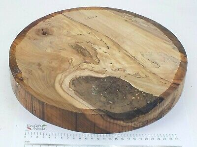 Huge English Spalted Elm woodturning or carving bowl blank.  330 x 44mm. 3981A
