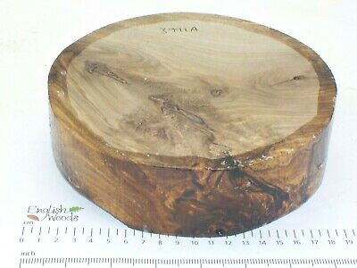 English Walnut woodturning or wood carving bowl blank.  180 x 50mm. 3991A