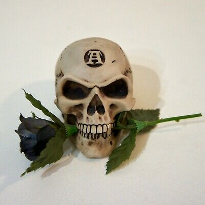 Original Alchemy Gothic Resin Skull with Gold Tooth and Black Rose