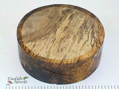 Spalted English Walnut woodturning or wood carving bowl blank. 140 x 50mm. 4067A