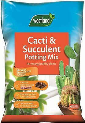 Westland Cacti Succulent Potting Compost Mix&Enriched with Seramis,Pack 2 X 4 L.
