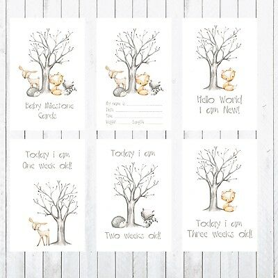 Baby Milestone Cards, Photo props, 30 4x6 Cards, Woodland Animals