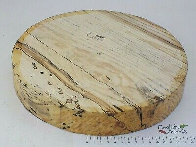 Spalted English Ash woodturning or wood carving bowl blank.  280 x 45mm.  4123A