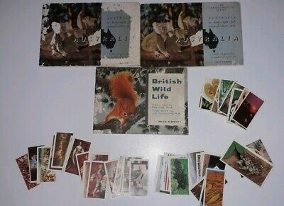 JOB LOT COLLECTABLE TEA CARDS AND ALBUMS. 1950's