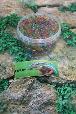 Bug Balls Water Hydration for insects livefood Bug gel Hydro Gut Load