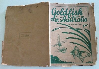 Goldfish In Australia by W.Jno.Baker Illustrated  C. Pearl Gibson 1933