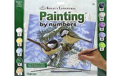 Royal Pal33  Paint By Number Adult Lg Pine Birds