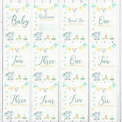 Baby Milestone Cards, Photo props, 30 4x6 Cards, Sweet Elephant