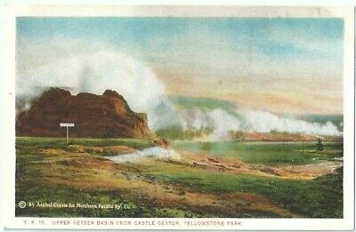 Upper Geyser Basin Castle Geyser Yellowstone National Park Vintage Postcard