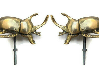 "2 small brass rhinoceros beetle KNOBS old style bolt polished statue 4"" heavy"