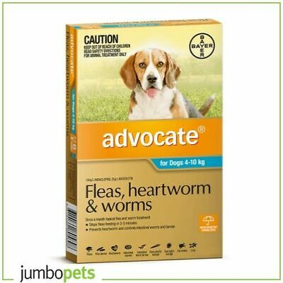 Advocate for Medium Dogs 4-10kg Teal Fleas Worms Heartworm Treatment