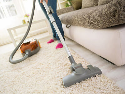 Start A Carpet And Rug Cleaning Business Work From Home Business Opportunity