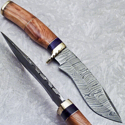 "Damascus Hand Forged Steel 9.75"" Blade Hunting Knife Olive Wood Handle - St-5339"