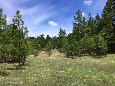 10.67 Acres Cascade County Montana Heavily Forested Views Secluded!