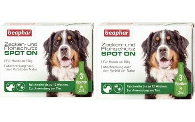 6 x 2 ML 2 Pack Beaphar Zecken-& Protection Anti-puce Spot-On Grand Chien Tiques