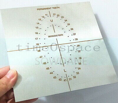 Stainless steel Dental Rubber Dam Template Oral Dams Punch Hole S.S Endodontic