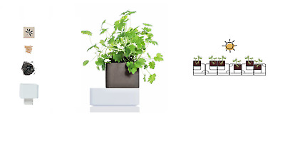 Smart pot  UNO 100% naturale di Kigarden per coltivazione piante officinali