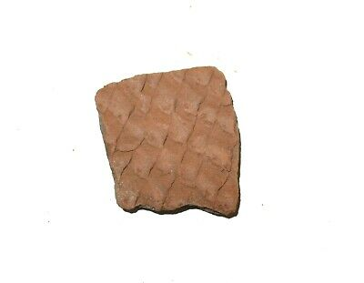 Anasazi Lost Tribe indian pottery shard 1000 yrs old corrugated scale type #S5