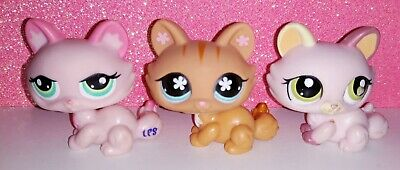 LOT authentic LPS 1345 649 1489 LITTLEST PETSHOP HASBRO CHAT CAT SPHYNX KITTY