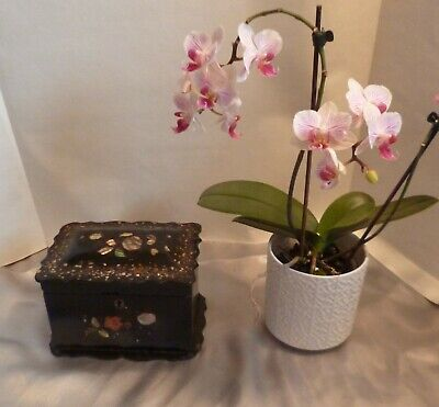 Antique Victorian Papier Mache Black Lacquered Tea Caddy-Mother-of-Pearl Inlay