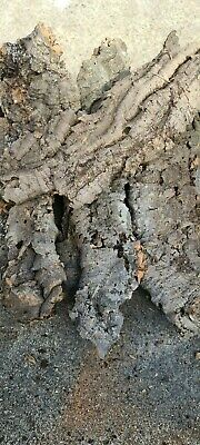 Mixed Cork Bark Perfect for Vivarium & Aquarium Decoration,