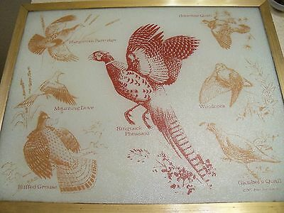 Vintage1975  Vance Industries 16 X 20 Glass Cutting Board~Hunting/Game Birds