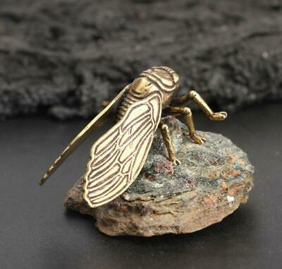 Chinese Collection ZCicada old Asian Antique Collectible Brass Exquisite statue