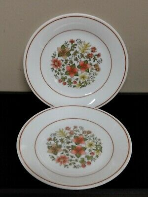 Pair Of Corelle Corning Indian Summer Dessert Plates