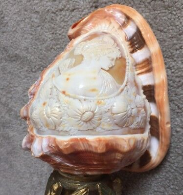 Antique Italian Victorian Carved Cameo Lady / Floral Conch Shell On Brass Stand