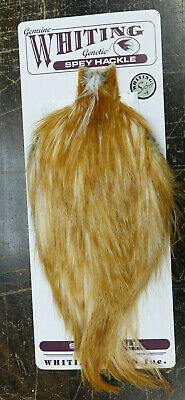 WHITING SPEY Cape SILVER Grade MEDIUM GINGER silver grade spey cape med.  ginger