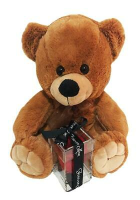 Anniversary Gift Large Bear & Single Eternal Rose in Acrylic Box Assorted Colour