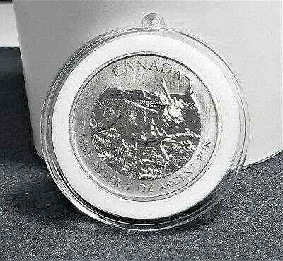 Pronghorn Antelope Canadian 2013 1 oz .9999 Pure Silver Coin In Decor Capsule
