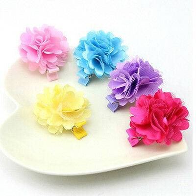SN_ 5 Pcs Girl Toddler Flower Hair Clips Baby Hairpin Accessory Barrette New F