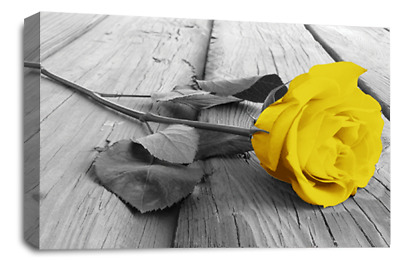 Floral Rose Wall Art Yellow White Grey Canvas Flowers Picture Panel