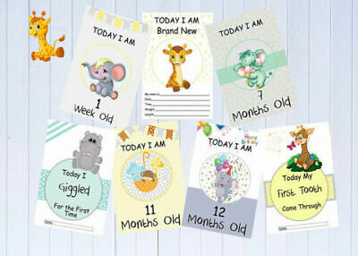 Baby Milestone Cards, Zoo Theme, Printed on 300gsm, Baby Gift, Photography Prop